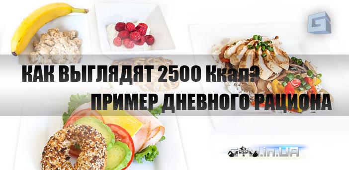 Как выглядят 2500 калорий? Пример дневного рациона